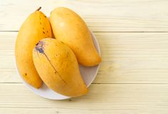 Fresh and golden mangoes. On wood background stock photo