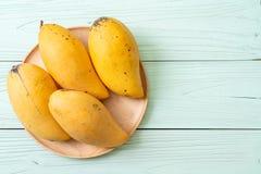 Fresh and golden mangoes. On wood background royalty free stock image