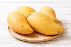 Fresh and golden mangoes. On wood background royalty free stock photography