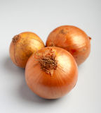 Fresh golden onions Royalty Free Stock Images