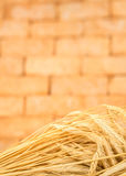 Fresh golden wheat barley ears with vintage brick background Royalty Free Stock Photos