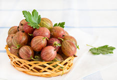 Fresh gooseberries in basket over light background Royalty Free Stock Image