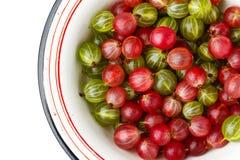 Gooseberries in an enamel bowl Royalty Free Stock Photos