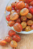 Fresh gooseberry close-up. Fresh ripe gooseberry close-up in a bowl Royalty Free Stock Photos