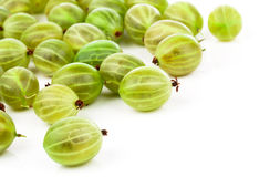 Fresh gooseberry Stock Photography