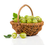 Fresh gooseberry Royalty Free Stock Photography