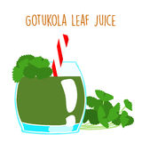 Fresh gotukola juice in glass with tube  Royalty Free Stock Image