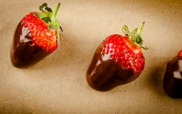 Fresh gourmet chocolate covered strawberries. For Valentine's Day stock photography