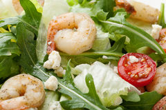 Fresh gourmet seafood salad with shrimps, greens, cherry tomatoe Stock Photo