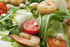 Fresh gourmet seafood salad with shrimps, greens, cherry tomatoe Royalty Free Stock Photos