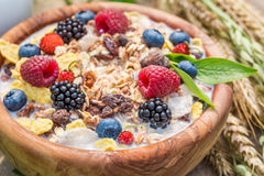 Fresh granola with berry fruits and milk in garden Stock Image