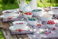 Fresh granola with berry fruits and milk in summer Royalty Free Stock Photos