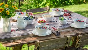 Fresh granola with raspberries and blueberries in sunny day. Session in outside Royalty Free Stock Image