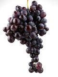 Fresh grape. Fruits on white royalty free stock image