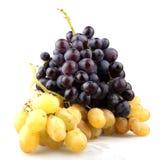 Fresh grape Royalty Free Stock Photos