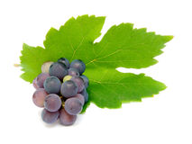 Fresh grape Stock Photos