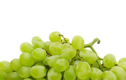 Fresh grape. On white background royalty free stock photos