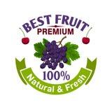 Fresh grape and cherry fruit icon Stock Photos