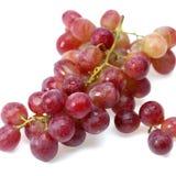 Fresh Grape cluster Stock Photos