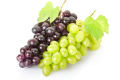 Fresh grape fruit. On white background, clipping path included royalty free stock images