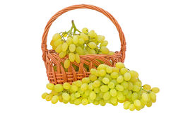 Fresh grape fruits Royalty Free Stock Images