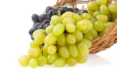 Fresh grape fruits and basket on white Stock Photography