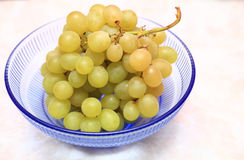 Fresh grape fruits in blue bowl Royalty Free Stock Image