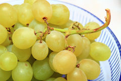 Fresh grape fruits with green leaves Royalty Free Stock Photography