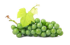 Fresh grape fruits with green leaves isolated Royalty Free Stock Photo