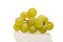 Fresh grape isolated on white Stock Photography
