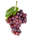 Fresh grape. Royalty Free Stock Photos