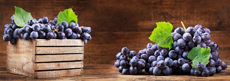 Fresh grape in a wooden box. Fresh grape with leaves in a wooden box stock images