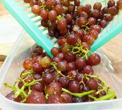 Fresh Grape. Red grapes in basket with a  in selective focus Stock Images