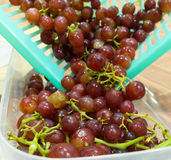 Fresh Grape. Red grapes in basket with a  in selective focus Royalty Free Stock Photo
