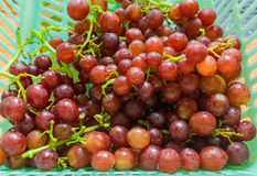 Fresh Grape. Red grapes in blue basket Stock Image