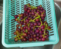 Fresh Grape. Red grapes in blue basket Stock Photo