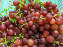 Fresh Grape. Red grapes in blue basket Royalty Free Stock Photos