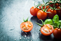 Fresh grape tomatoes with basil Royalty Free Stock Images