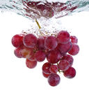 Fresh grape in water. On a white background with air bubbles royalty free stock photo