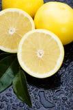 Fresh grapefruit Royalty Free Stock Image