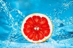 Fresh grapefruit Stock Photography