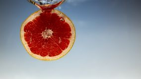 Fresh grapefruit with water splash on blue background close up. Fresh grapefruit with water splash on blue background royalty free stock photo