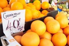 Fresh grapefruits Stock Images