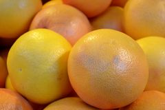 Fresh grapefruits. Close up of  fresh grapefruits Stock Photography