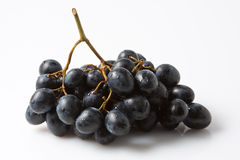 Fresh Grapes Stock Photography