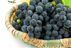 Fresh grapes in a basket Royalty Free Stock Image