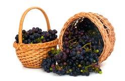 Fresh grapes in a basket Stock Photos