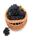 Fresh grapes in basket Stock Image
