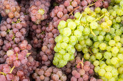 Fresh grapes on display Royalty Free Stock Image