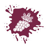 Fresh grapes fruits icon Royalty Free Stock Image